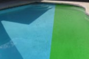 The top four ways to kill algae in a swimming pool